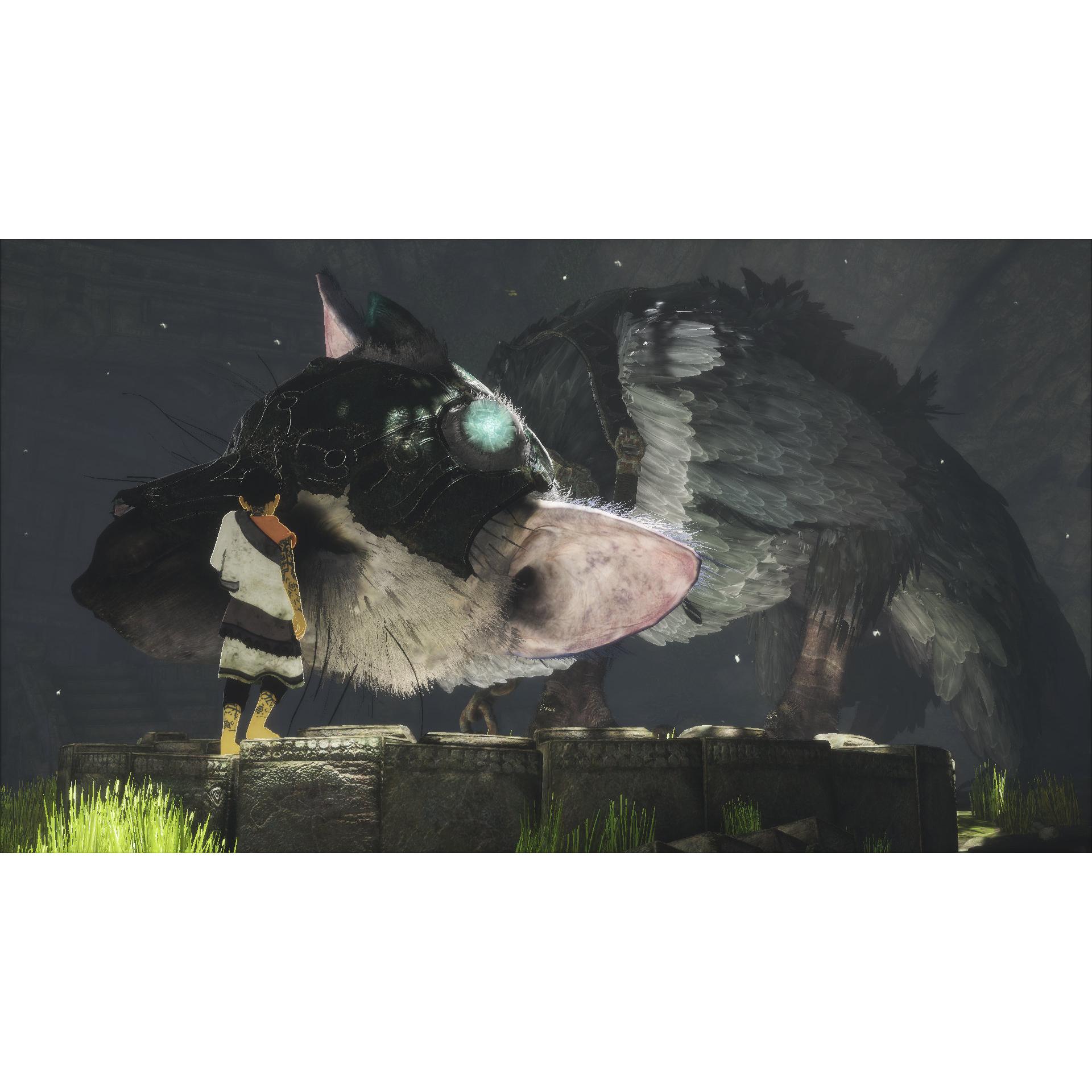 Joc The Last Guardian pentru Playstation 4 1
