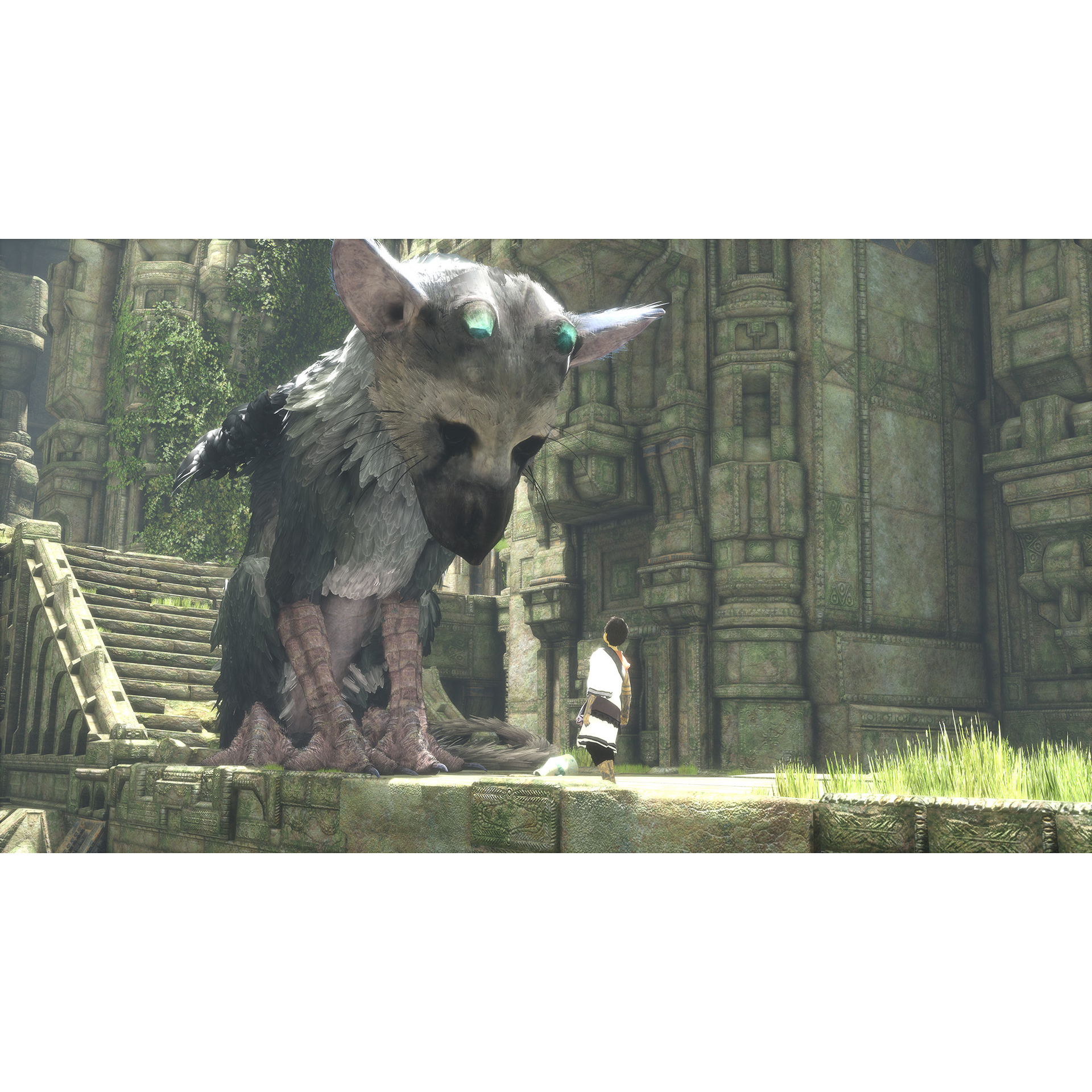 Joc The Last Guardian pentru Playstation 4 5