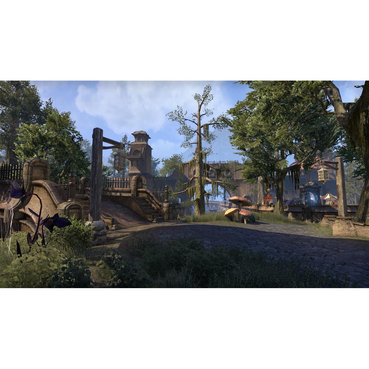 Joc The Elder Scrolls Online Morrowind pentru Xbox One 5