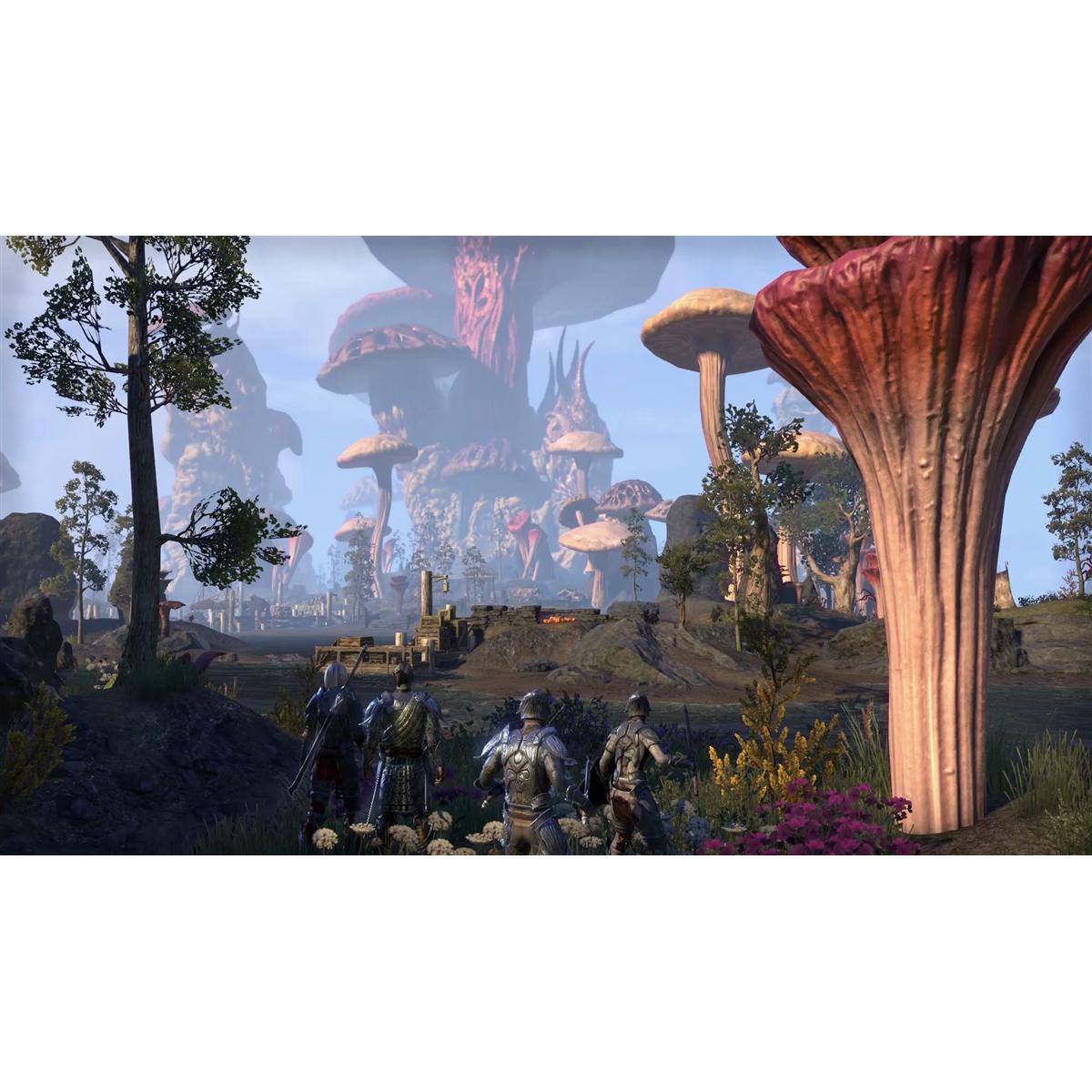 Joc The Elder Scrolls Online Morrowind pentru Xbox One 2
